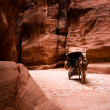 Carriage with horse in Siq - Petra - Stock Photo