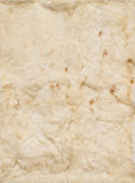 Beige leathers of rabbits, four pieces together — Stock Photo