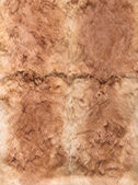Ginger leathers of rabbits, four pieces together — Stock Photo