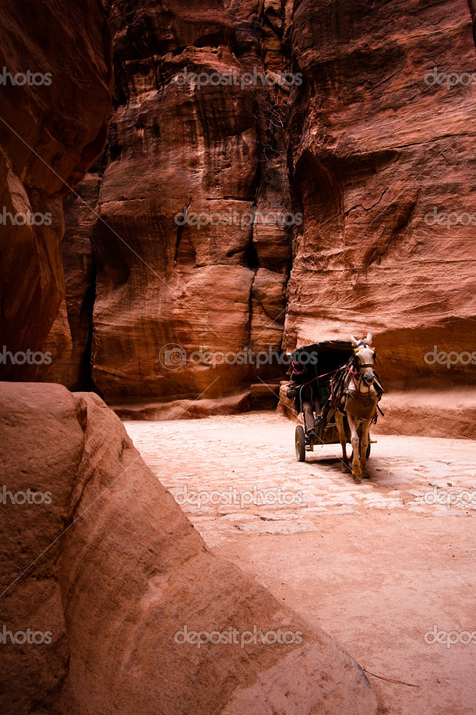 Unrecognizable bedouin drives carriage in canyon in Petra, Jordan. — Stock Photo #12038234