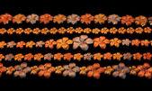 Květinové šperky - náramek — Stock fotografie