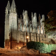 Cathedral of Palmde Majorca — Stock Photo #12351627