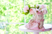 The light-pink peony and bunny — Stock Photo