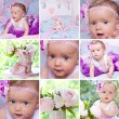 Stock Photo: Beautifull baby collage