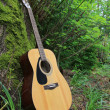 Acoustic guitar leaning against a moss covered tree — Stock Photo