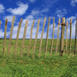 Fence pasture — Stock Photo