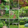 Gardens collage — Stock Photo #11104880