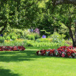 parkgarden — Stockfoto #11104897