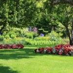 Parque jardim — Foto Stock