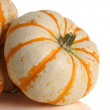 pumpkins — Stock Photo #11105238