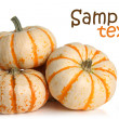 pumpkins — Stock Photo #11105242
