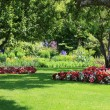 Park garden - Stock Photo
