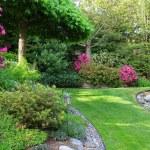 Garden — Stock Photo #11106020