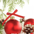 Christmas ornaments — Stockfoto #11106079