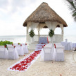 Stockfoto: Tropical wedding