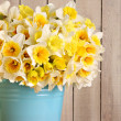Daffodils — Stock Photo #11106871