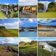 Beautiful Iceland — Stock Photo