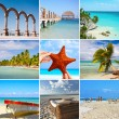 Mexico collage — Stock Photo