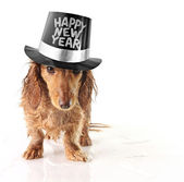 Happy new year — Foto de Stock