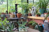 Green house interior — Stock Photo