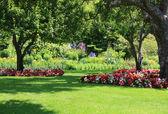 Park garden — Stock Photo