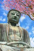 Big Buddha — Stock Photo