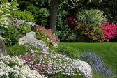 Rock garden — Stock Photo