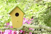Cabane d'oiseaux — Photo