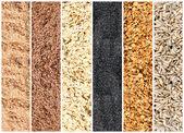 Whole grains — Stock Photo