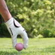 Ladies golf — Stock Photo