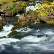 Fast flowing river. — Stock Photo