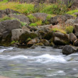 Fast flowing river — Stock Photo #11286711