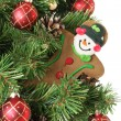 Stock Photo: Gingerbread man