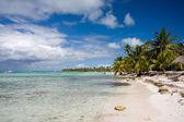 Bellissima spiaggia — Foto Stock