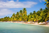 Island beach — Stock Photo