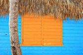 Finestra caraibica — Foto Stock
