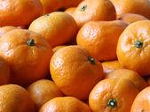 Fruit still life, perfect unblemished oranges — Stock Photo