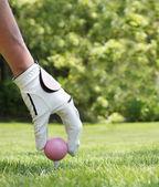 Ladies golf — Stock Photo