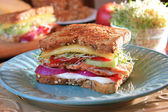 Southwestern turkey sandwich — Stock Photo