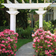 Garden arbor and pink flowers. - Stock Photo