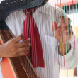 Mexico harp music — Stock Photo