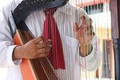 Mexico harp music — Stock Photo
