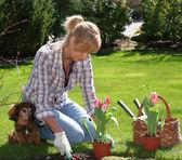 Pretty gardener — Stock Photo
