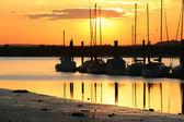 Sailing boats at sunset — Stock Photo