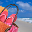 Stock Photo: Beach bag