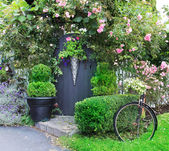 Small charming garden gate. — Stock Photo