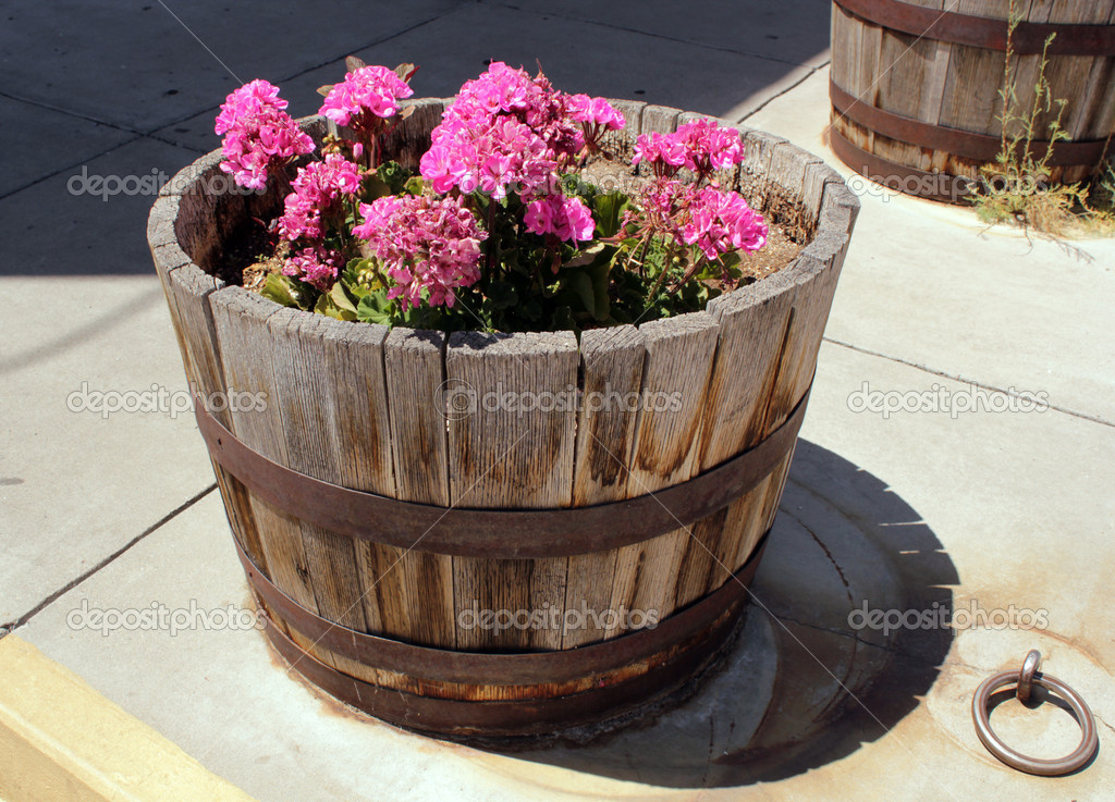 Plant with flowers in outdoor wooden flowerpot standing on the ground — Stock Photo #11229123
