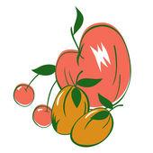 Useful fruits — Stock Vector