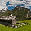 Alp chalet - Stock Photo