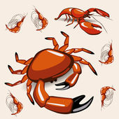 Crab animal — Stock Vector